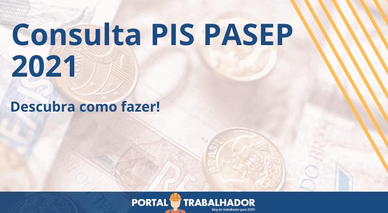 Saiba como fazer Consulta PIS PASEP 2021!